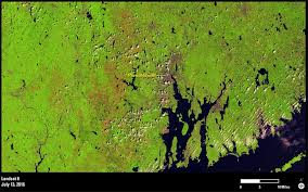 Rhode Island Forest images Landsat 8 shows forest cover in rhode island with gypsy moth png