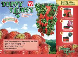 topsy turvy hanging tomato planter
