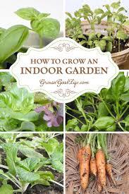 how to start an indoor vegetable garden gardening ideas