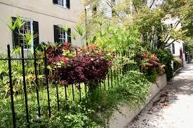 Beautiful Window Boxes Dr Dan U0027s Garden Tips A Bountiful Box Of Beauty
