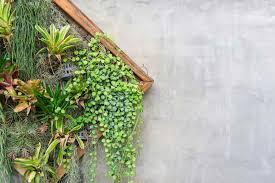 Vertical Garden Trellis - how to create a vertical hydroponic gardening system