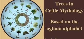 trees in celtic mythology calling