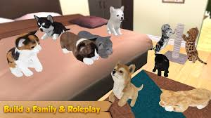cat u0026 dog online pet animals android apps on google play