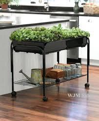 Indoor Herb Pots Window Box - indoor herb garden window box indoor window garden box houseplants