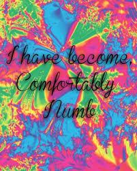 Lyrics For Comfortably Numb Best 25 Comfortably Numb Ideas On Pinterest Pink Floyd