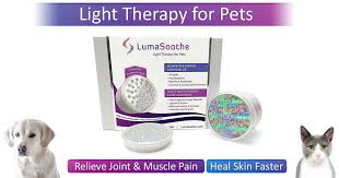 my skin buddy light therapy lumasoothe light therapy for pets