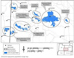 Colorado Mesa University Map by What U0027s The Difference Between Gunnison And Greater Sage Grouse