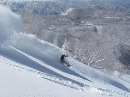 when does it start to snow in the jigokudani monkey area snow