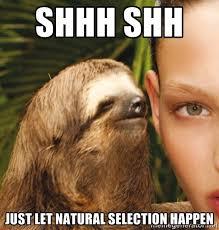 the rape sloth shhh shh just let natural selection happen nothin
