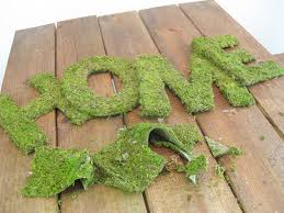 moss covered letters oh louise crafty diy moss covered frame