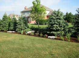 Ideas For Backyard Privacy by Landscaping Ideas For Backyard Privacy U2013 Erikhansen Info