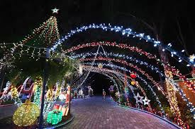 winter park christmas lights pictures winter park couple s light display featured on abc show