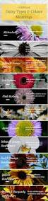 Meaning Of Pink Best 25 Meaning Of Emotional Ideas On Pinterest Red Colour
