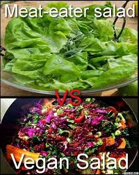 Salad Meme - meat eaters salad vs vegan salad vegan meme vegan humor vegan