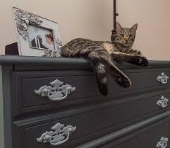 Make Over a Craigslist Dresser By Brittany Goldwyn