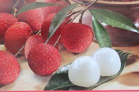 lychee fruit sweet heart lychee u2013 ch fruit tree nursery