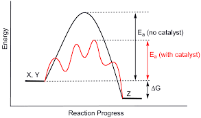 kinetics does a reaction have to have a rate determining step