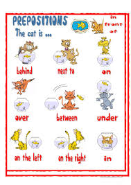 prepositions the cat is worksheet free esl printable