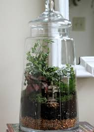 easy steps for creating a terrarium hgtv
