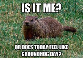 Happy Day Memes - happy groundhog day all the memes gifs you need to see heavy