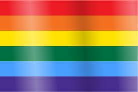 Purple Flag Lgbt Sexuality U0026 Gender Identity Pride Flags