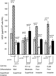 relation of vascular endothelial growth factor production to