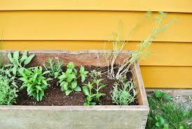 planters diy indoor herb planter box window flower home depot