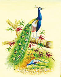 the peacock a symbol of royalty taste of the past