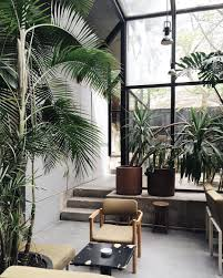Home Interior Plants by Concrete Interiors And Indoor Plants At Café Vitória Portugal