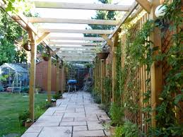 jacksons timber pergola has given the garden an extra dimension