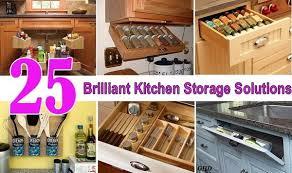 kitchen storage ideas 25 brilliant kitchen storage solutions home design garden