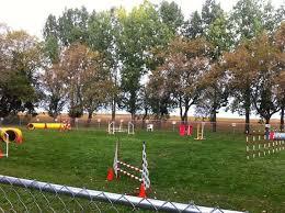 Backyard Agility Course Mal 2014
