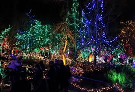 Vandusen Botanical Garden Lights Festival Of Lights At Vandusen Botanical Garden The Chronicles