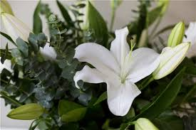 white lillies white lilies gardenia beautiful flowers same day delivery to