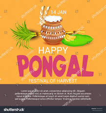 Pongal Invitation Cards Vector Illustration Banner South Indian Harvesting Stock Vector
