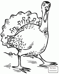 coloring pages birds cool thanksgiving turkey turkey colorpages7