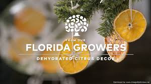 dehydrated citrus decor youtube