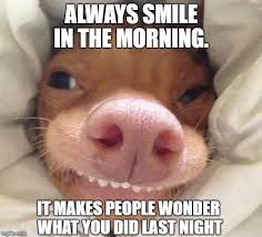 Good Morning Funny Meme - morning smile imgflip