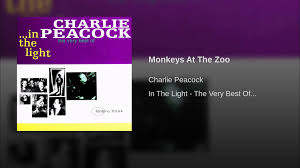 Lights At The Zoo by Monkeys At The Zoo Youtube