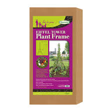 eiffel tower plant frame haxnicks