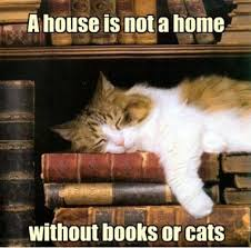 Books Meme - books books books everywhere scriboman