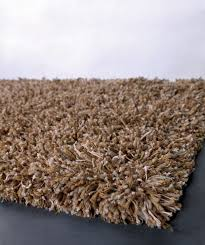 Shag Carpet Area Rugs Furniture Interesting Shag Area Rugs For Modern Your Living Room