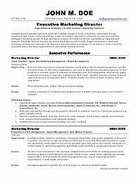 professional marketing resume marketing resume exles printable marketing resum
