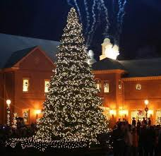 fantastic christmas holiday lights display family holiday net