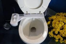 Why Have A Bidet Stop Using Toilet Paper Get The Blue Bidet Treehugger
