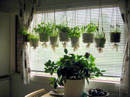 Wall Planters Indoor Ikea Apartments Amazing Space Saving Vertical Herb Garden Ideas For