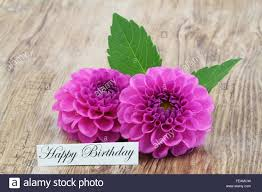 birthday cards with flowers happy birthday cousin ecards sample