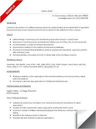 sample computer programmer resume free entry level computer