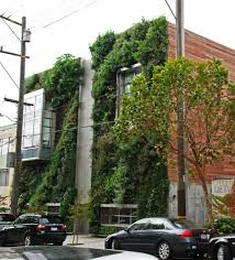Urban Gardens San Francisco - drew san francisco vertical garden patrick blanc