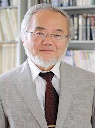 Ōsumi Yoshinori
